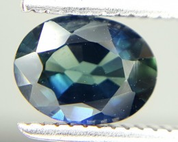 0.88 Crt Natural Sapphire Faceted Gemstone (M 47)