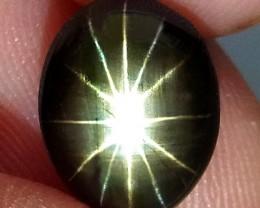 1$NR - 3.79 Carat 12 Rays Star Sapphire - Gorgeous