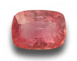 Natural Padparadscha | Loose Gemstone| Sri Lanka - New