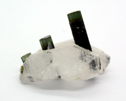 62 Cts Natural Bio Color Tourmaline With Quartz Specimen @ Pakistan