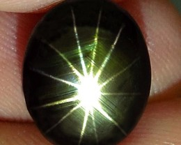 6.50 Carat Thailand 12 Ray, Black Star Sapphire - Gorgeous