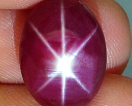 10.26 Carat Flashy Star Ruby - Gorgeous