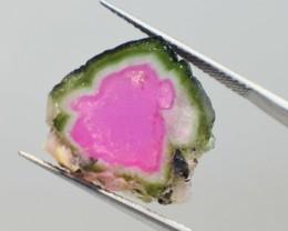 15.95 CTS Watermelon Tourmaline Slice impressive~~