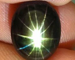 7.86 Carat Thailand Black Star Sapphire - Gorgeous