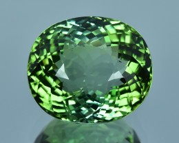 13.17 Cts Amazing Top Green Natural Tourmaline
