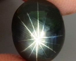 5.70 Carat 12 Ray Star Sapphire - Superb
