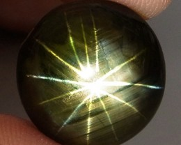 13.33 Carat 12 Ray Thailand Black Star Sapphire - Gorgeous