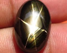 17.41 Carat Thailand Black Star Sapphire