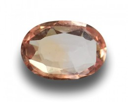GIA Certified Natural Padparadsha|Loose Gemstone|Sri Lanka - New