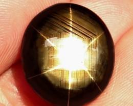 1$NR - 25.63 Carat Thailand Black Star Sapphire - Gorgeous