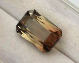 4.75 Carat Scissor Cut Bicolored Tourmaline