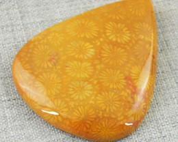 Genuine 56.50 Cts Coral Fossil Pear Shape Cab