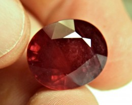 24.41 Carat Fiery Red Ruby - Gorgeous