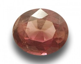 Natural Unheated Padparadscha |Loose Gemstone|New| Sri Lanka