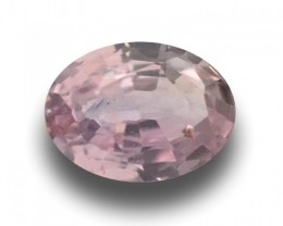 Natural Pink Sapphire | Loose Gemstone | Sri Lanka Ceylon - N