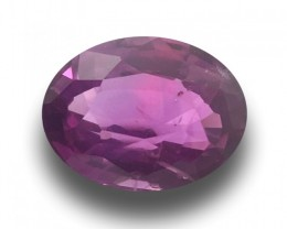 1.35 Carats | Natural Purple Sapphire | Loose Gemstone | Sri Lanka Ceylon -