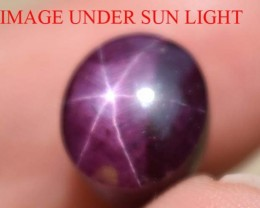 8.17 Ct Star Ruby CERTIFIED Beautiful Natural Unheated & Untreated