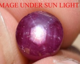 4.98 Ct Star Ruby CERTIFIED Beautiful Natural Unheated & Untreated