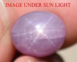 11.72 Ct Star Ruby CERTIFIED Beautiful Natural Unheated & Untreated
