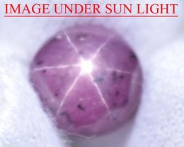 7.39 Ct Star Ruby CERTIFIED Beautiful Natural Unheated & Untreated