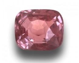 Natural unheated pink Sapphire  |Loose Gemstone|New Certified| Sri Lanka