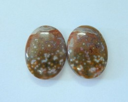 Natural Ocean Jasper Oval Cabochon Pair For Women(17091802)