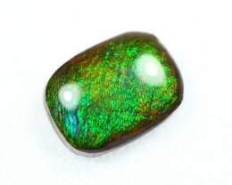 SPECIAL CANADIAN AMMOLITE DAY ~ Lot 07 12x9mm / Selling $108