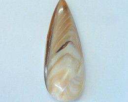 Natural Shell Teardrop Cabochon For Jewelry Design(17092701)