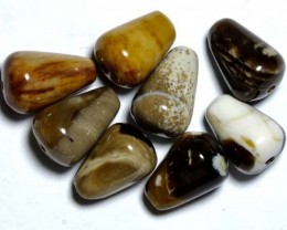 PETRIFIED WOOD BEADS (8PC) 35.55CTS NP-841