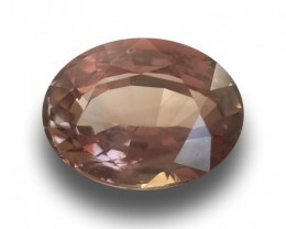 Natural Unheated Padparadscha|Loose Gemstone| Sri Lanka - New