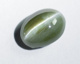 Untreated Ceylon Alexandrite Cats eye 1.63 Ct. (00732)