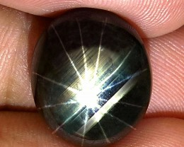 24.28 Carat 12 Ray Thailand Black Star Sapphire - Gorgeous
