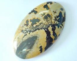 102.5ct Natural Chohua Jasper Cabochon(17101717)