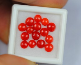 4.76Ct Natural Untreated Italy Red Coral Lot S1342