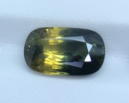 13.28 GIL CERTIFIED TIMELESS RARE BI COLOR SAPPHIRE HIGH QUALITY GEMSTONE
