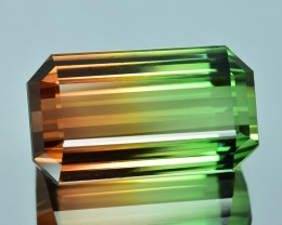 42.02 Cts Mesmerizing  Fine Collection Natural Bi Color Tourmaline