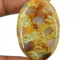 Genuine 30.00 Cts Coral Fossil Oval Shape Cab
