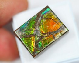 Lot 01 ~ 37.17Ct Natural Canadian Ammolite 21x16mm / Selling $345