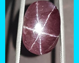 Star Garnet 28.5ct 21mm with AAA star oval cabochon