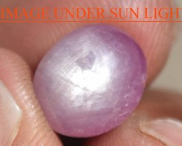 7.90 Carats Star Ruby Beautiful Natural Unheated & Untreated
