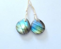 22ct Natural Labradorite Earring Beads(17110310)