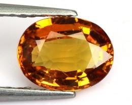 1.37 Cts Natural Corundum Sapphire Golden Yellow Oval Thailand