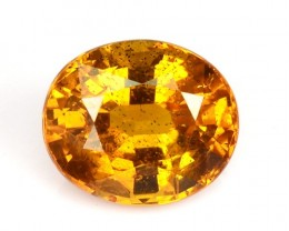 1.65 Cts Natural Corundum Sapphire Golden Yellow Oval Thailand