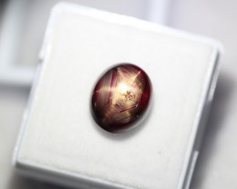 7.58Ct Natural 6 Rays Star Ruby Lot V10