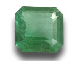 Natural Unheated Emerald |Loose Gemstone - New