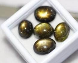Lot 10 ~ 25.27Ct Natural 6 Rays Black Star Sapphire
