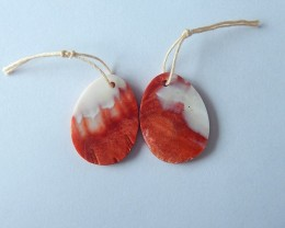 18.5ct Natural Mexico Agate Earring Beads For Lady(17111104)