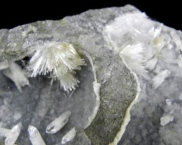 Very Rare Natrolite & Prehnite display specimen from Bombay, India list