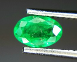 0.40 Crt Natural Emerald Faceted Gemstone (R 101)