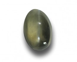 Natural Unheated Zircon Cats Eye|Loose Gemstone|New| Sri Lanka